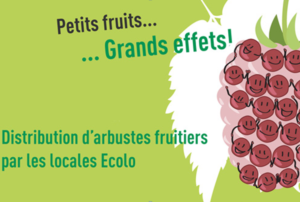 action_distribution_petits_fruitiers
