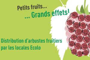 distribution_petits_fruitiers